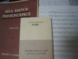 ミクロコスモス dans 俳句 haiku IMG_0293-300x225